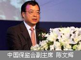 中国保监会副主席 陈文辉